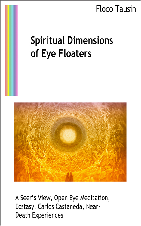 The eBook: Spiritual Dimensions of Eye Floaters.