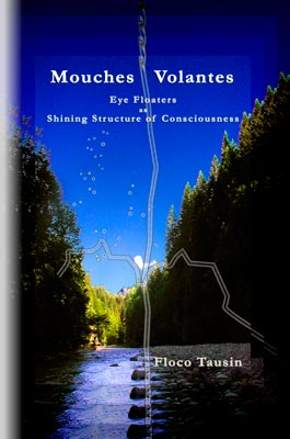 The cover of the book: Mouches Volantes - Eye Floaters as Shining Structure of Consciousness.