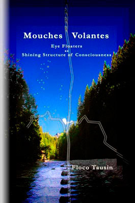 Thank you for your order of the book: MOUCHES VOLANTES - Eye Floaters as Shining Structure of Consciousness.