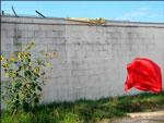 """Sunflowers Figure and Bird. Lightjet Plexi face-mount, 22.5""""""""x 30"""""""" 2006"""