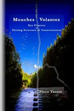 Mouches Volantes - Eye Floaters as Shining Structure of Consciousness.